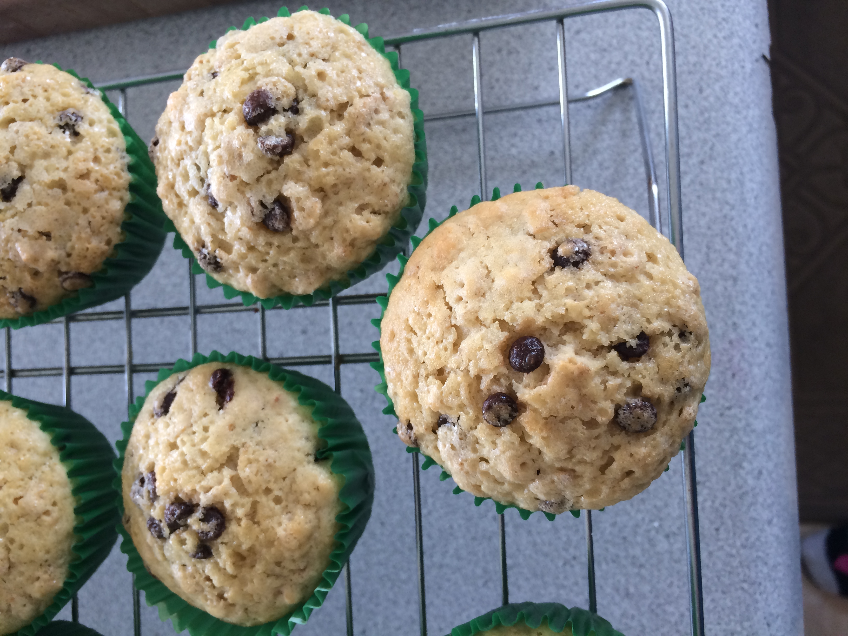 Oatmeal Chocolate Chip Muffins   Chella's Common Cents